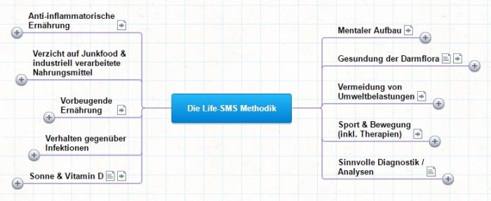 Landkarte der Life-SMS-Methodik