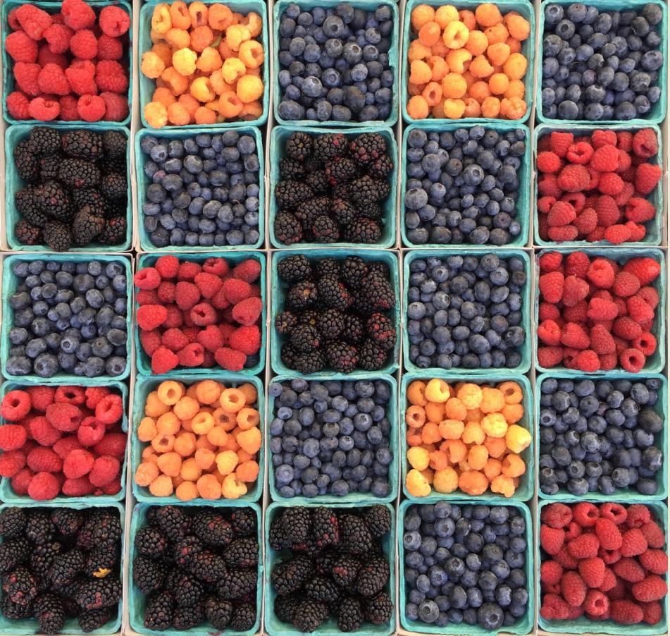 2017-02-12-berries-unsplash-felker