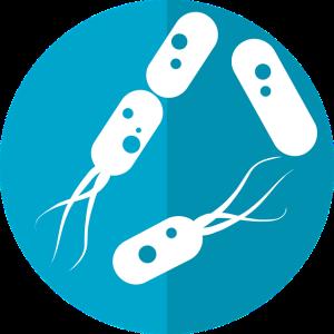 illustrative Darstellung von Bakterien