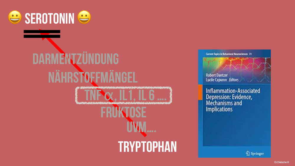 Grafik möglicher Störfaktoren der Umwandlung von Tryptophan zu Serotonin