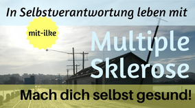 Logobanner MS mit-ilke